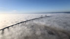 UK bridge shrouded in 'stunning' blanket of fog
