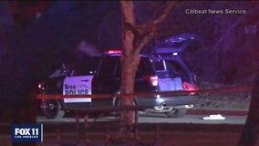 Suspect shot dead by police in Brea