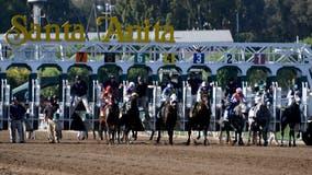 Horse euthanized at Santa Anita after suffering training injury