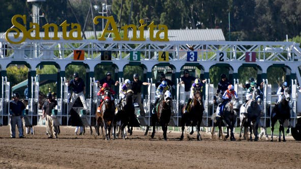 Horse euthanized at Santa Anita after suffering training injury