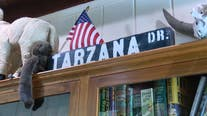 What the Hal? How the neighborhood of Tarzana got its name