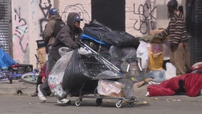 Lawsuit challenges lack of protection for LA's homeless