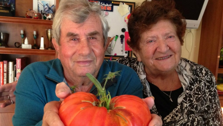 Feliks and Luiza Ogorodnik are the first Illinois couple in Illinois to both die from COVID-19. | ChicagoJewishFunerals.com