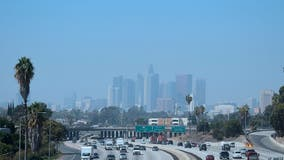 Lung Association: L.A. still has nation's 'worst ozone pollution'