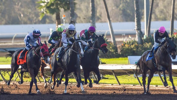 Horse fatally injured while winning race at Los Alamitos