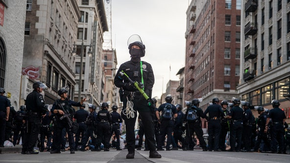 LAPD asks protesters to report excessive force
