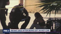 Infant found dead in hot car