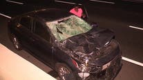 5 burros killed, motorist hurt after herd of donkeys wander onto 215 Freeway causing series of crashes