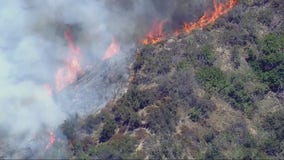 Brush fire in Hollywood Hills now contained