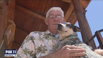 Dog lost during Apple Fire reunites with his owner