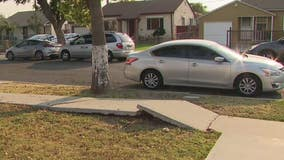 """I'm totally excited,"" Resident in joy after broken sidewalk in Compton fixed after nearly 3 years"