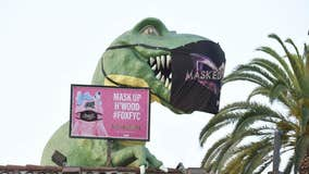 Iconic LA landmarks join The Masked Singer this FYC season by keeping their masks on