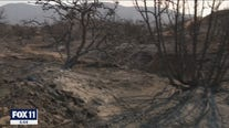 Homes lost due to raging Bobcat Fire