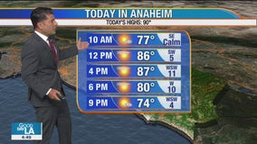 Weather Forecast for Thursday, September 10