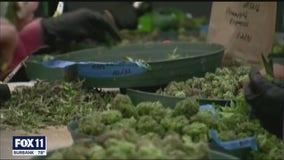 7 shot to death at illegal marijuana grow in Aguanga