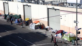 LA City Council approves funding for several homeless housing solutions