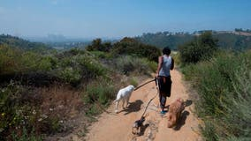Santa Monica mountain trails closed through Labor Day weekend after hiker dies