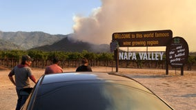 Wildfire erupts in California's Napa County, emergency evacuations over 'dangerous rate of spread'