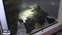 Ballot drop box catches fire in Baldwin Park