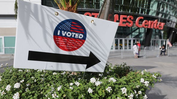 Nearly 50K turn out to vote in-person on opening weekend in Los Angeles