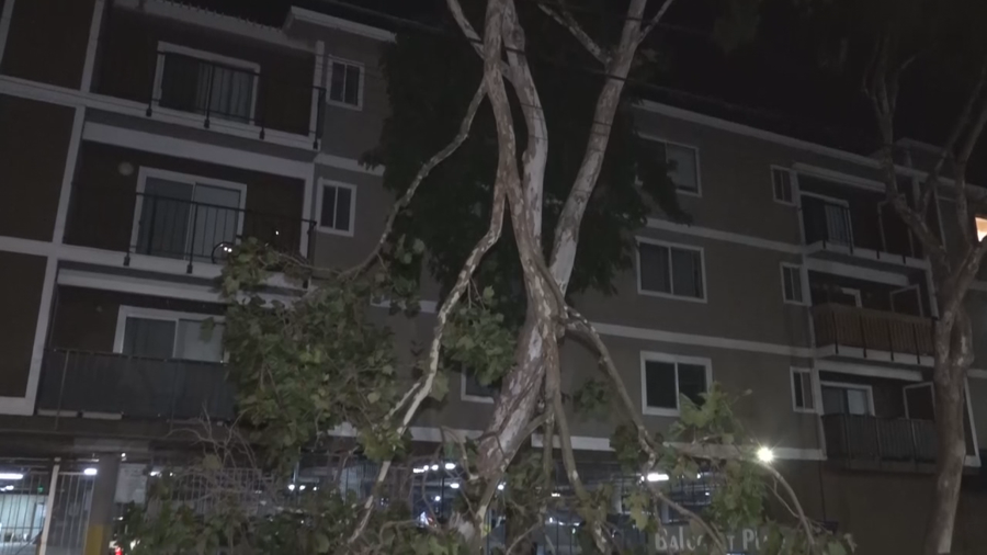 Thousands without power in Los Angeles County amid Santa Ana winds