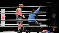 Boxing: Jake Paul knocks out former NBA player Nate Robinson in second round
