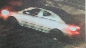 LAPD searching for driver who fatally struck 76-year-old woman; $50,000 reward offered