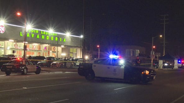 Pedestrian killed by two hit-and-run drivers in South LA