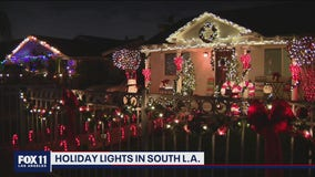 Holiday Lights in South LA