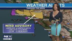 Wind advisory in effect for LA County