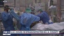 UK COVID-19 strain detected in LA County