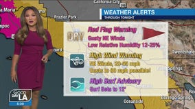 Weather Forecast for Tuesday, January 19