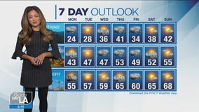 Weather Forecast for Monday, January 25