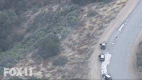 Driver suspected of stealing car crashes into bushes after leading CHP on chase from 5 Freeway