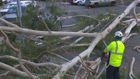 Thousands still without power after strong winds sweep through SoCal, cleanup underway