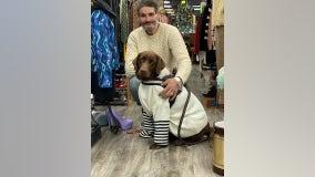 'I am at a loss for words': Homeless man heartbroken over stolen service dog, $10,000 reward offered
