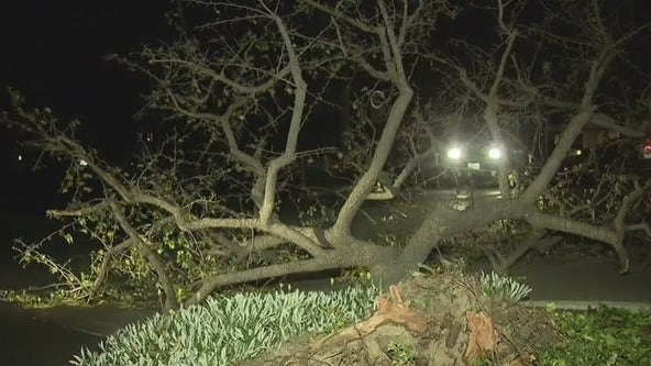 High winds knock out power for tens of thousands across Southern California
