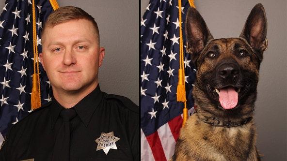 California sheriff's deputy, his K9 partner, suspect dead following shootout