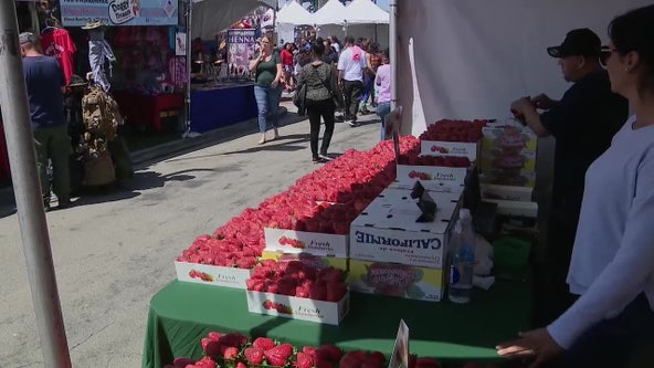 Garden Grove Strawberry Festival postponed again, now set for 2022