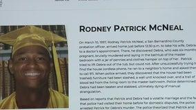 Domestic killer parole controversy