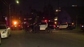 Woman killed while walking dog in Koreatown, suspect arrested