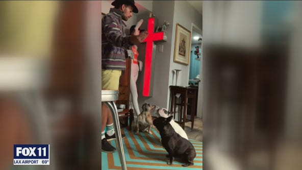 Friend of Lady Gaga's dog walker reacts to violent robbery