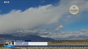 Desert Forecast for March 12-14