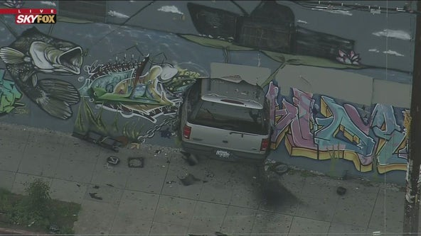 Vehicle crashes into liquor store in South LA