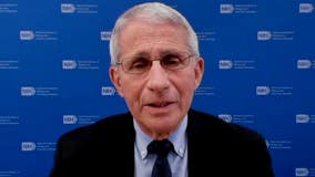 COVID vaccine passport: Fauci says federal government won't mandate