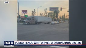 Big rig driver says he blocked path of chase suspect possibly wanted for murder before crash in Pomona