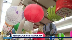 Rediscover Little Tokyo part 2