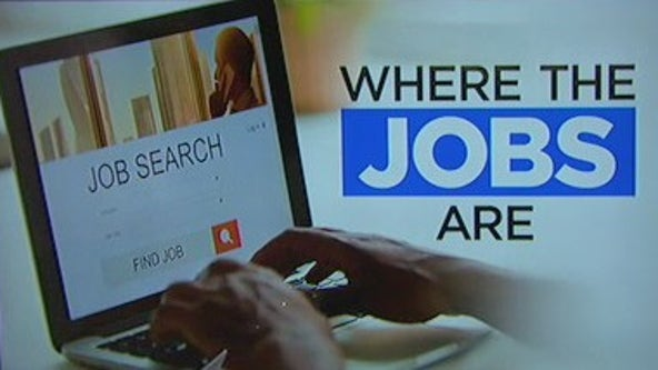 Job fairs and other career opportunities