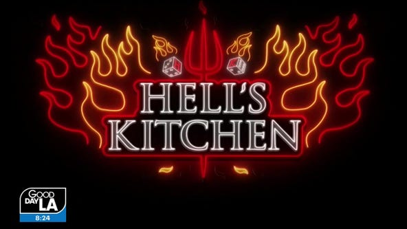 Hell's Kitchen Season Finale: Which Chef Deserves The Job?