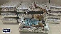Criminals charges filed against over a dozen suspected drug dealers